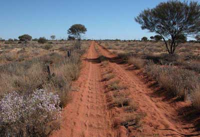 Westaustralien, Australien: Expedition Canning-Stock-Route - Piste aus rost-rotem Sand